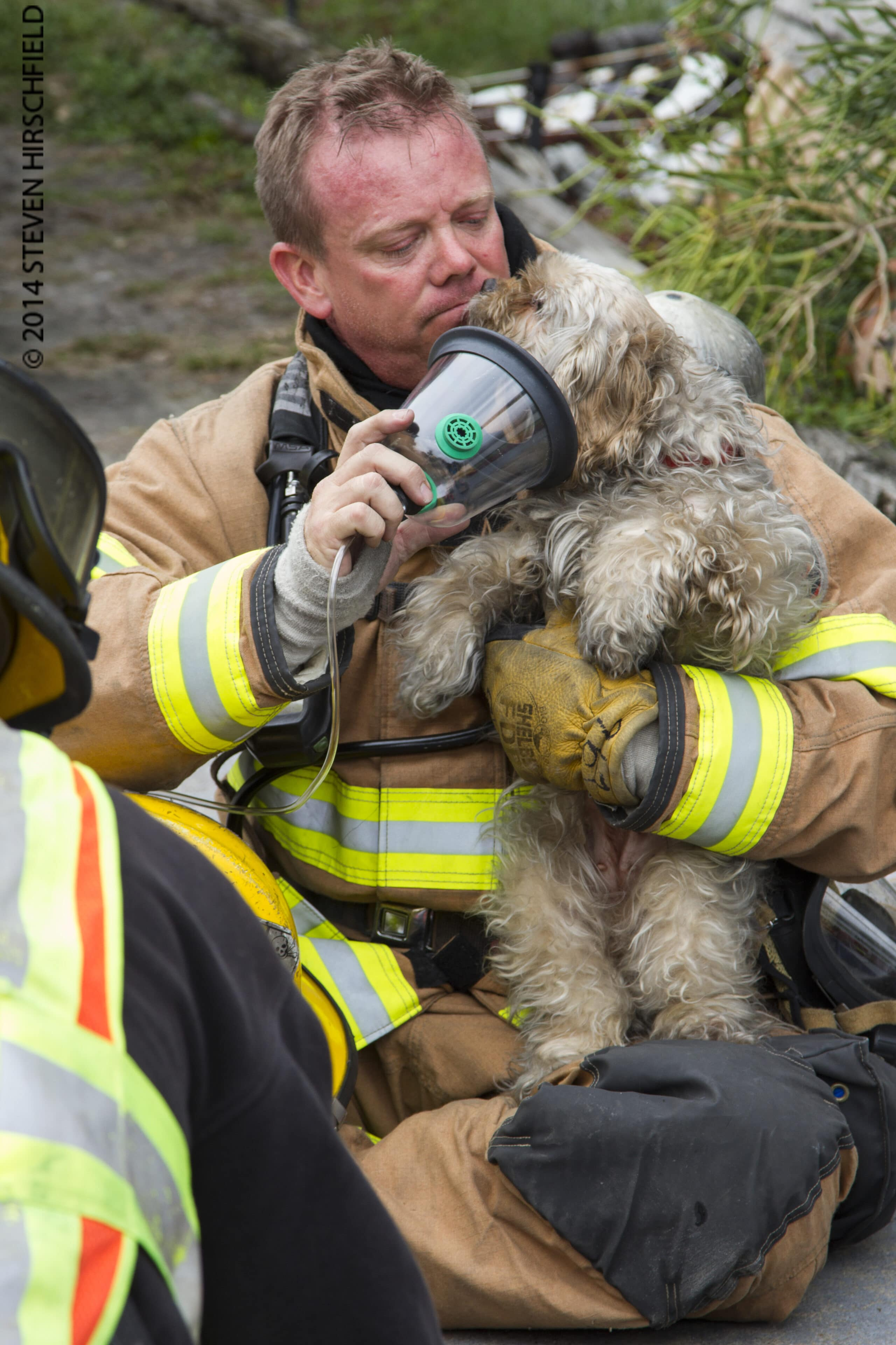 Firefighters Rescue Unresponsive Animals from Structure Fire in Largo