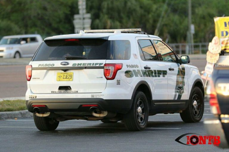 Three Arrrested After Smash and Grab Vehicle Burglaries in Pinellas and Pasco
