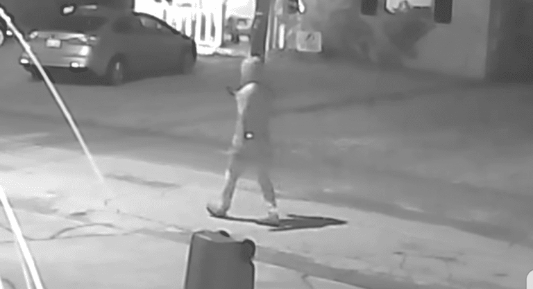 Police Release Surveillance Video Connected to 4th Seminole Heights Shooting