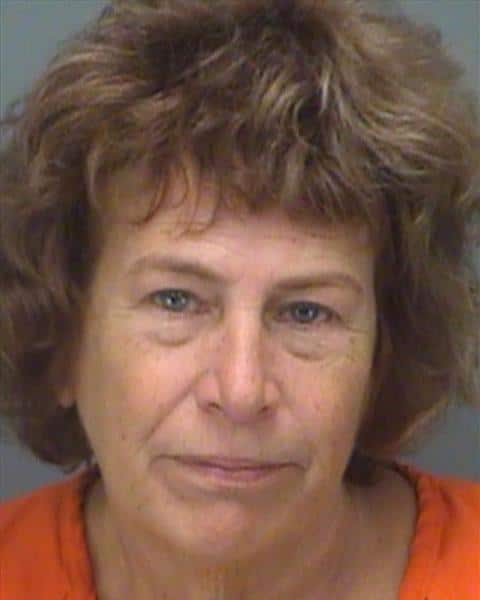 Pinellas Deputies Arrest Woman Discovered by a Homeowner Stealing the Mail Carrier's Christmas Gift