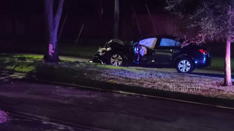 Clearwater woman dies following crash in Dunedin