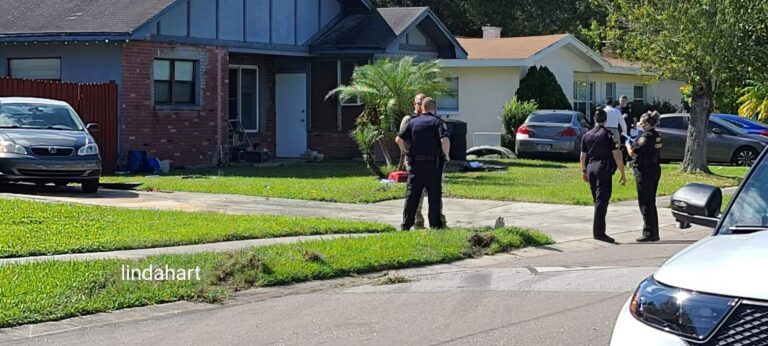 Driver fled scene after striking pedestrian in Clearwater