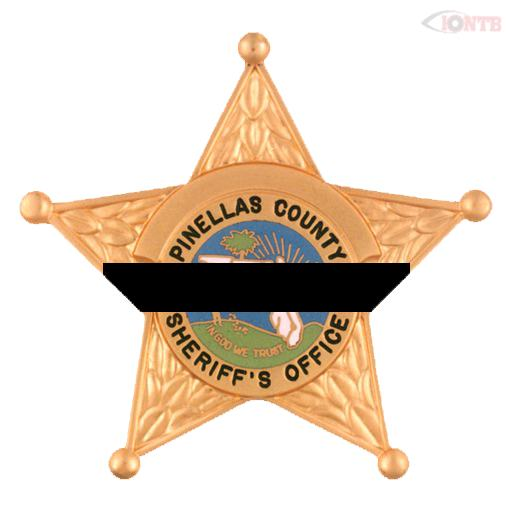 Pinellas deputy struck and killed in crash off East Lake Road, subject in custody