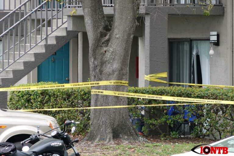 Arrest made in fatal shooting at the Four Lakes at Clearwater apartment complex