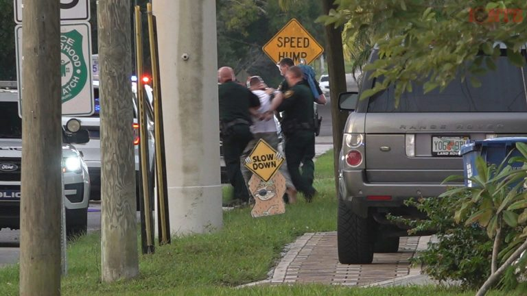 Subject in custody after crime spree involving carjacking, hit and run and home invasion